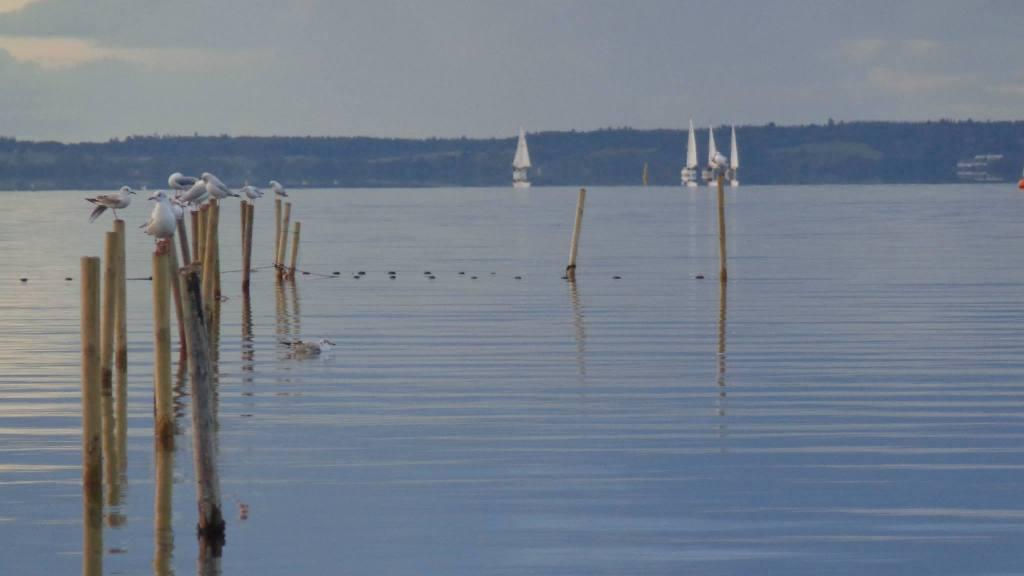Fjorden ved Sundstrup